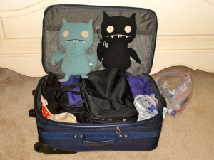 A suitcase to live out of, although the Ice Bats seem to have conquered.